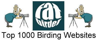 Fatbirder's Top 1000 Birding Websites